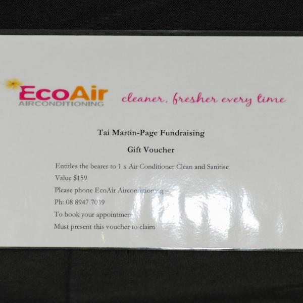 1x airconditioner clean and sanitise thanks to EcoAir, these guys rock!