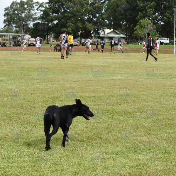 An extra player on Tiwi Oval?